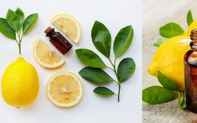 Tout ce que vous devez savoir sur l'essence de citron