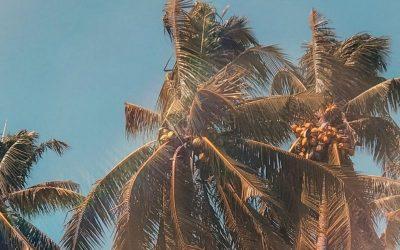 Soleil : comment éviter les taches ?