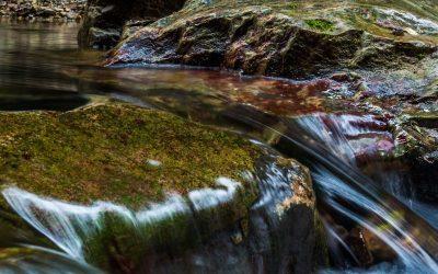 Les purificateurs d'eau